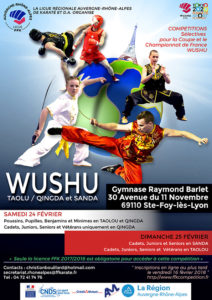 competition-wushu-qualifications-24-02-2018-v2