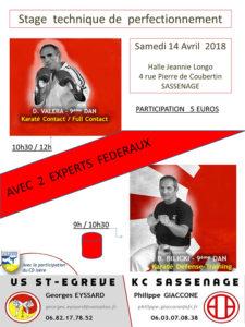 stage-karate-valera-bilicki-14-04-2018