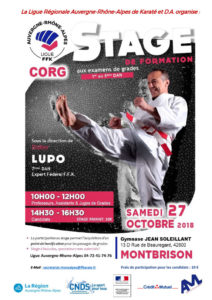 stage-formation-ligue-aura-lupo-26-10-2018