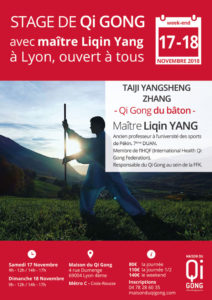 stage-qi-gong-liqin-yang-17-et-18-11-2018
