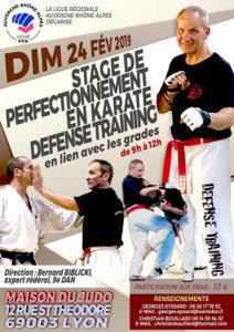 stage-karate-defense-bilicki-24-02-2019