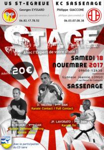 stage-karate-experts-valera-bilicki-lavorato
