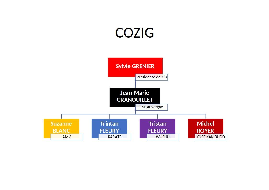 Organigramme COZIG