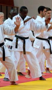 karate_triptyque_part2