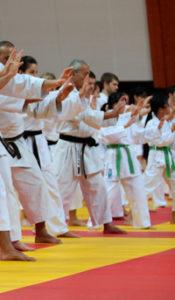 karate_triptyque_part3