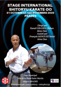 Stage Prades-PO 2020